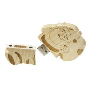 Tekno 121 - Wooden Custom USB Drive